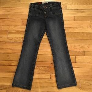 Vintage Paris Blues Flare Jeans